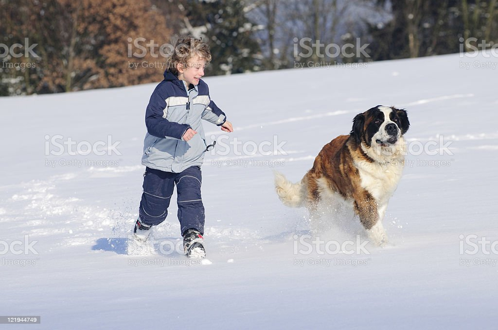 laughing boy and Bernardine run happily on New royalty-free stock photo
