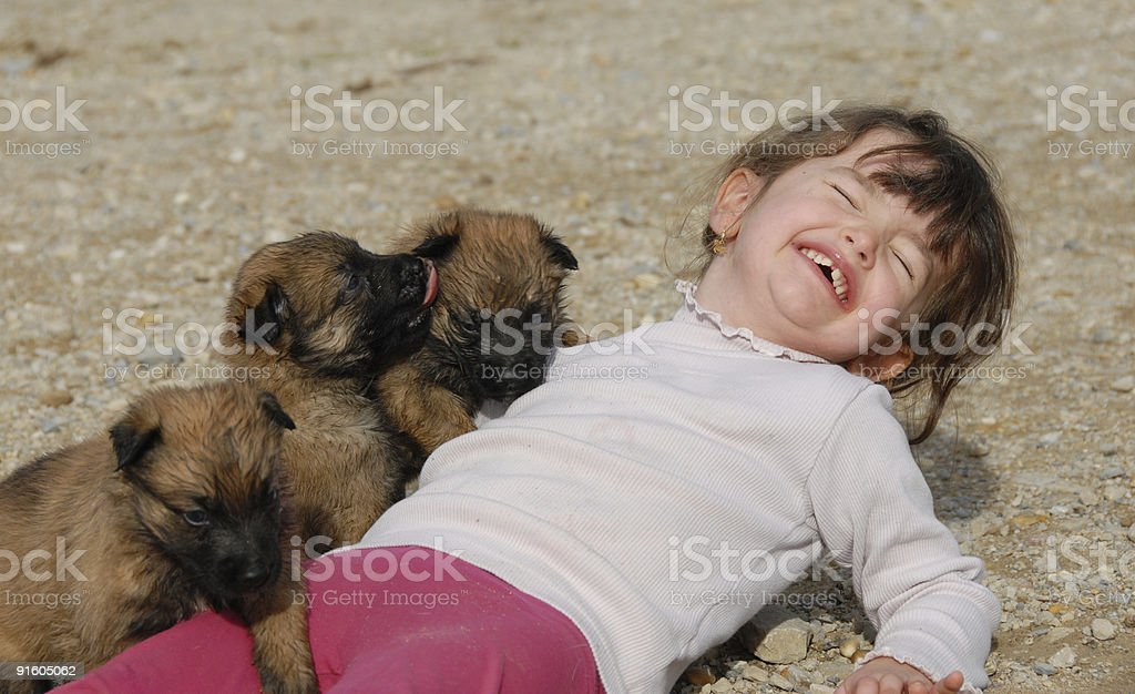 laughing girl and puppies stock photo