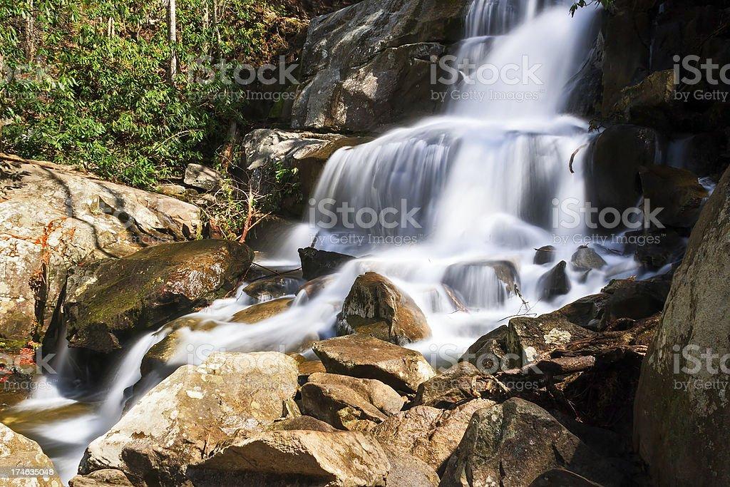Laurel Falls nel Smokies foto stock royalty-free
