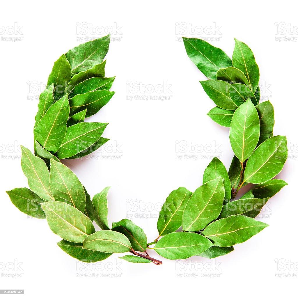 Laurel wreath isolated on white background stock photo