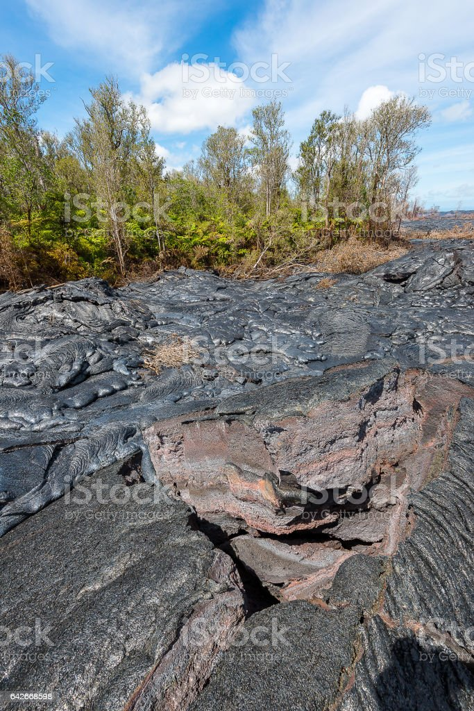 Lava field at Vocalnoes National Park Hawaii stock photo