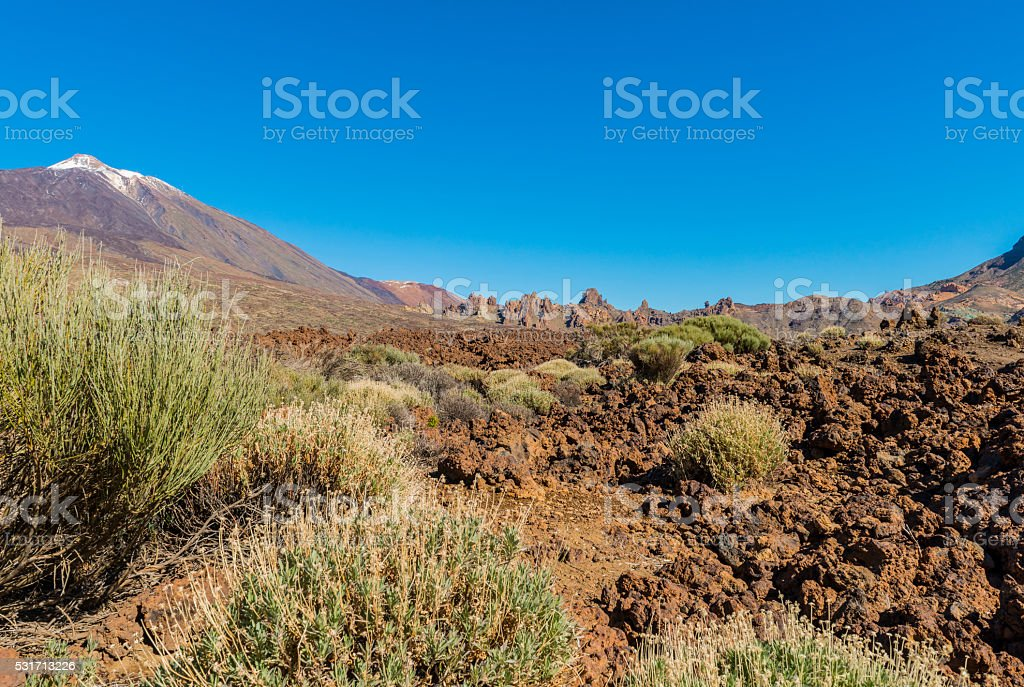 Lava Field with El Teide stock photo
