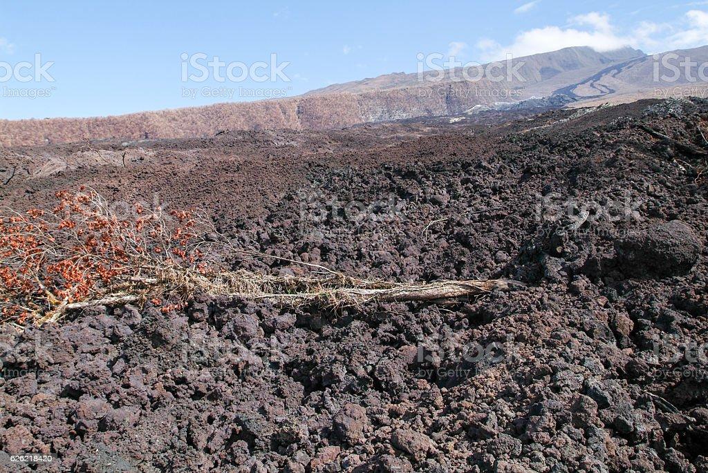 Lava flow of La Reunion Island on Indian Ocean stock photo
