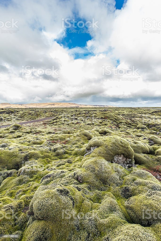 Lava rocks covered with moss in Iceland stock photo