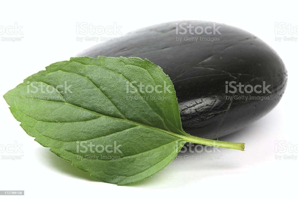Lava Stone with Mint royalty-free stock photo