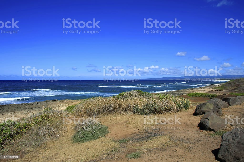 Lava stones at the beach royalty-free stock photo