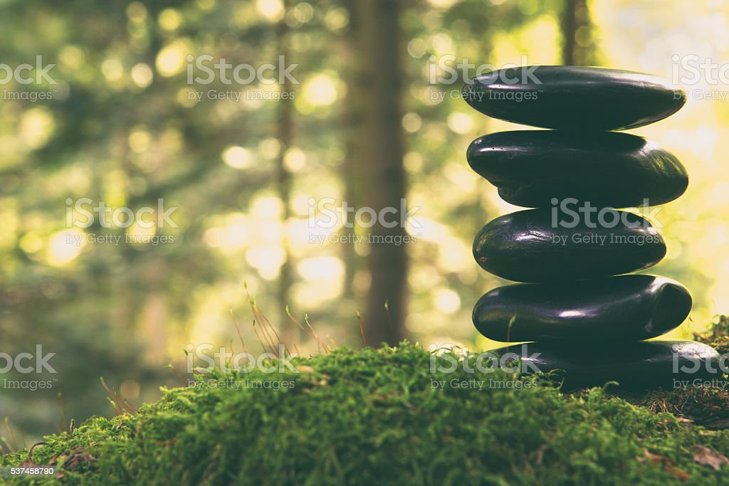 Lava stones in the forest stock photo