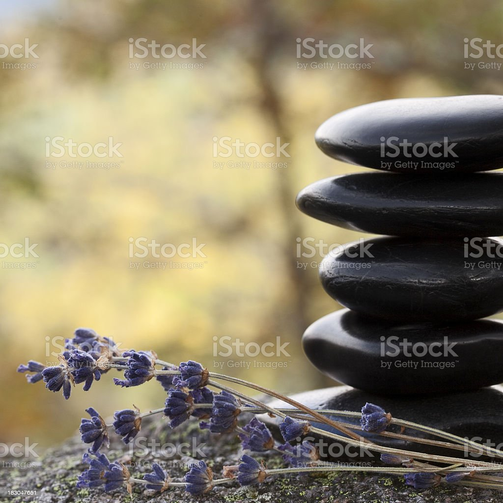 Lava stones on a rock royalty-free stock photo