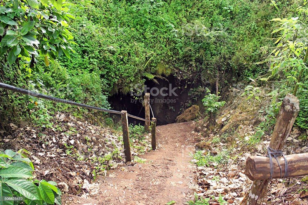Lava Tube Cave Entrance, Galapagos, Ecuador stock photo