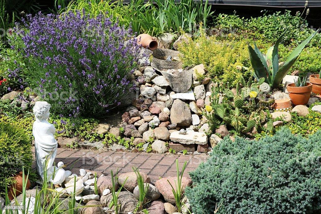 Lavandula angustifolia in the rock garden, Germany stock photo