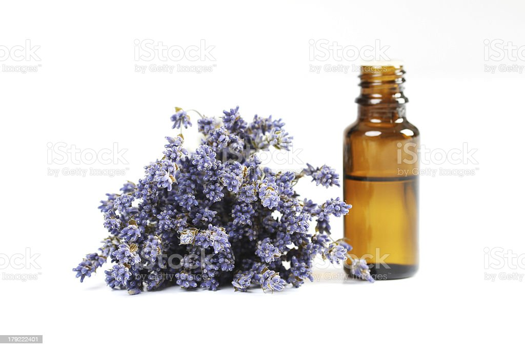 Lavender and essential oil on white background stock photo