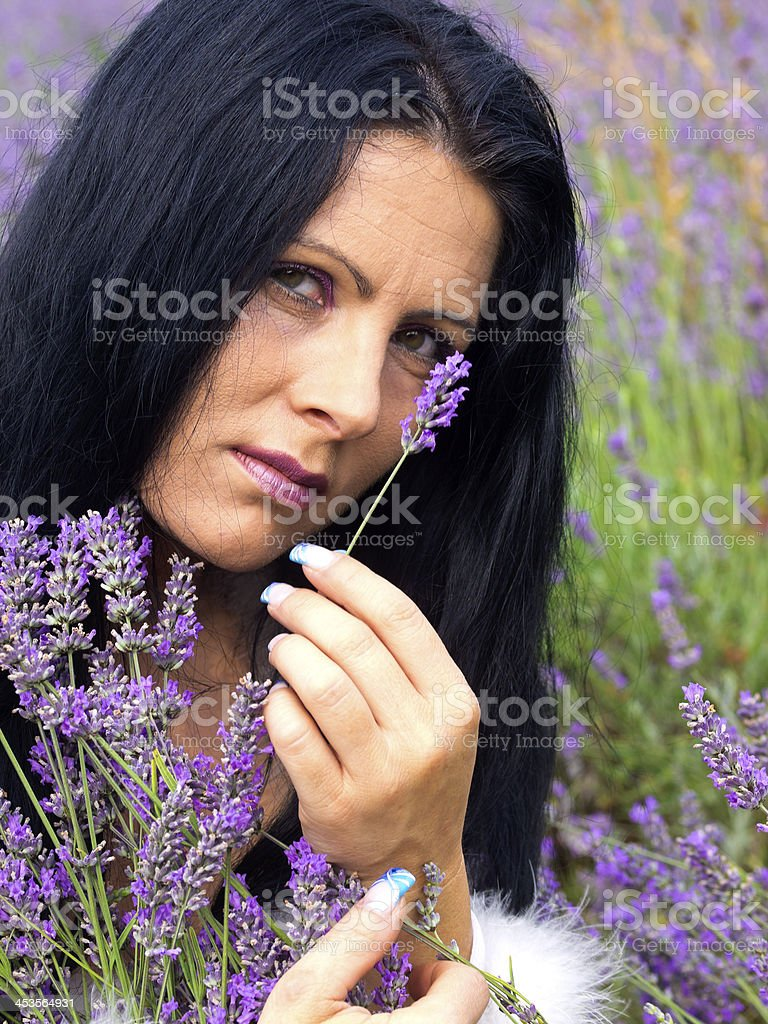 Lavender and Lady royalty-free stock photo