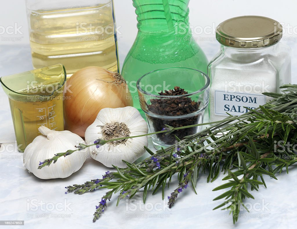 Lavender and Rosemary stock photo