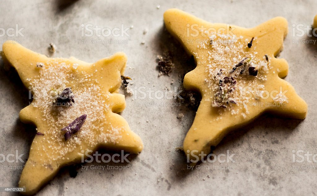 lavender biscuits unbaked stock photo