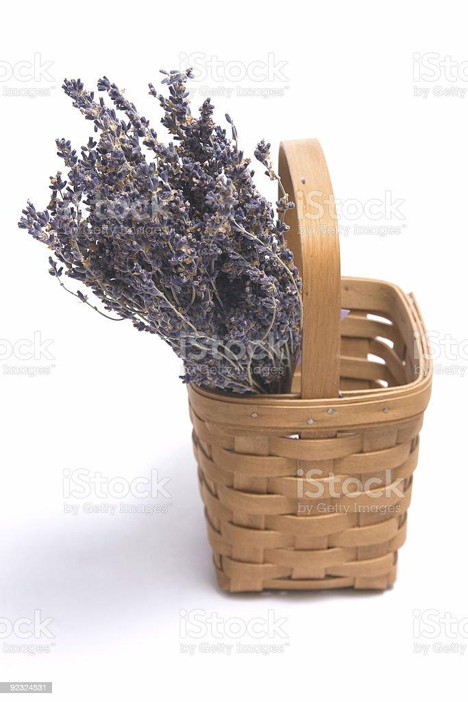 Lavender Decoration royalty-free stock photo