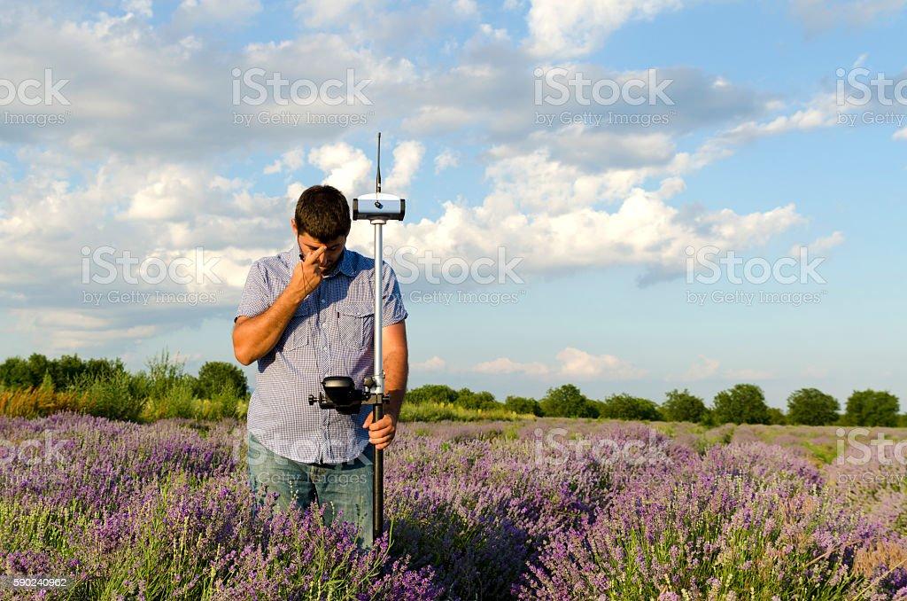 Lavender field and surveyor stock photo