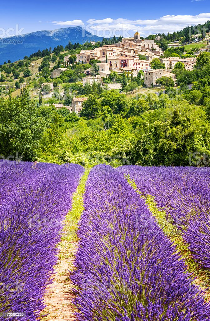 Lavender field and village, France. stock photo