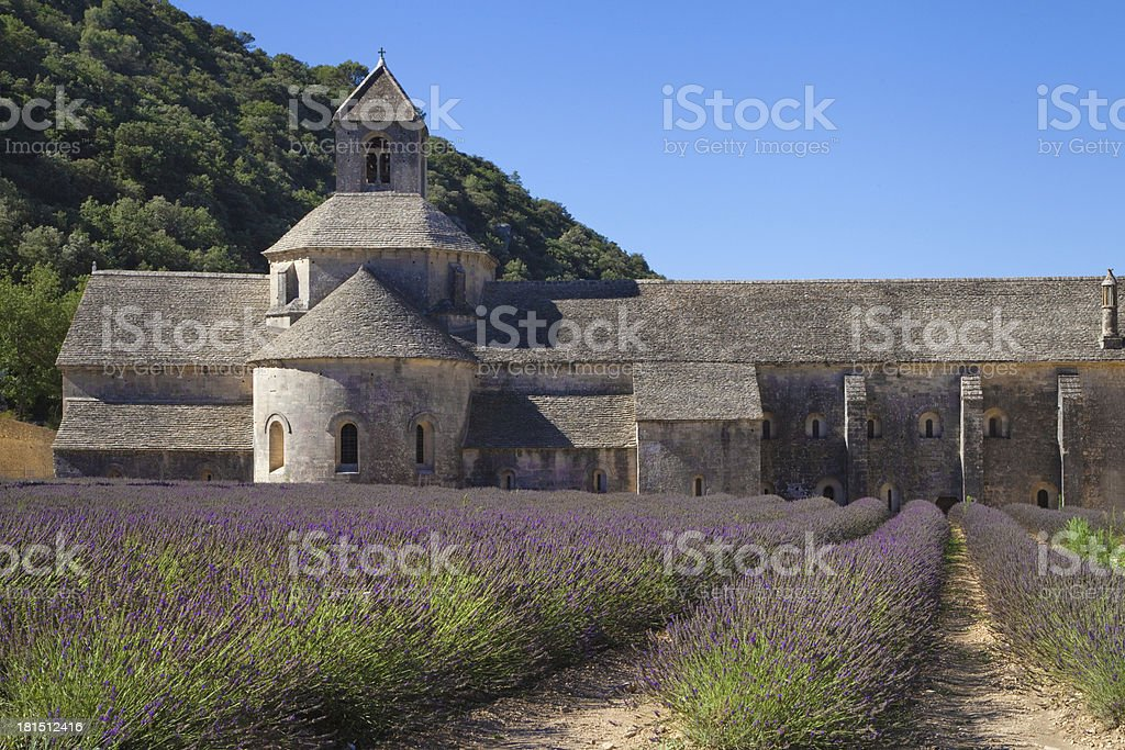 Lavender field at Senanque royalty-free stock photo