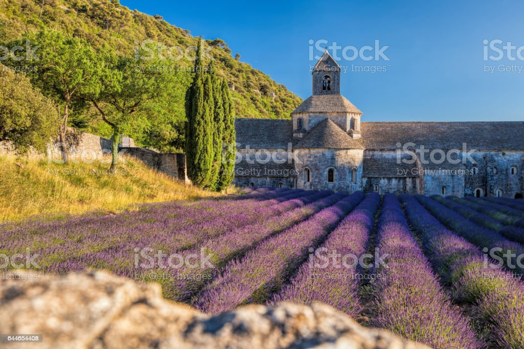 Lavender fields at Senanque monastery in Provence, France stock photo