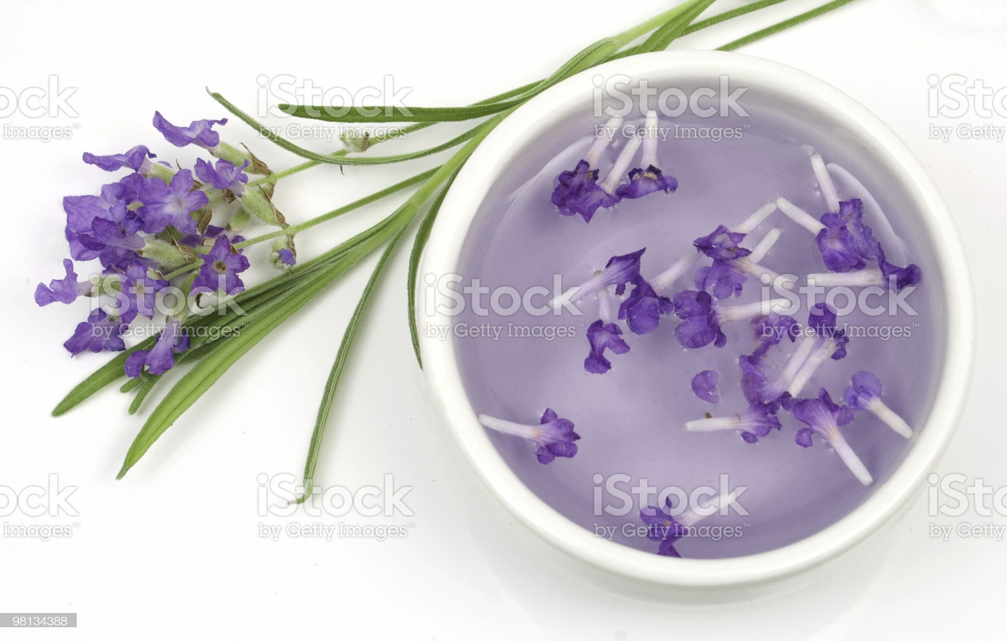 Lavender flower and extract royalty-free stock photo