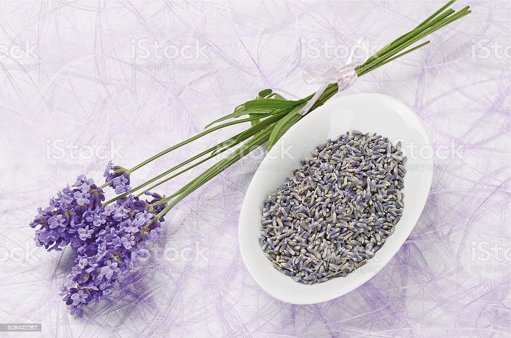 Lavender Flowers Fresh And Dry stock photo