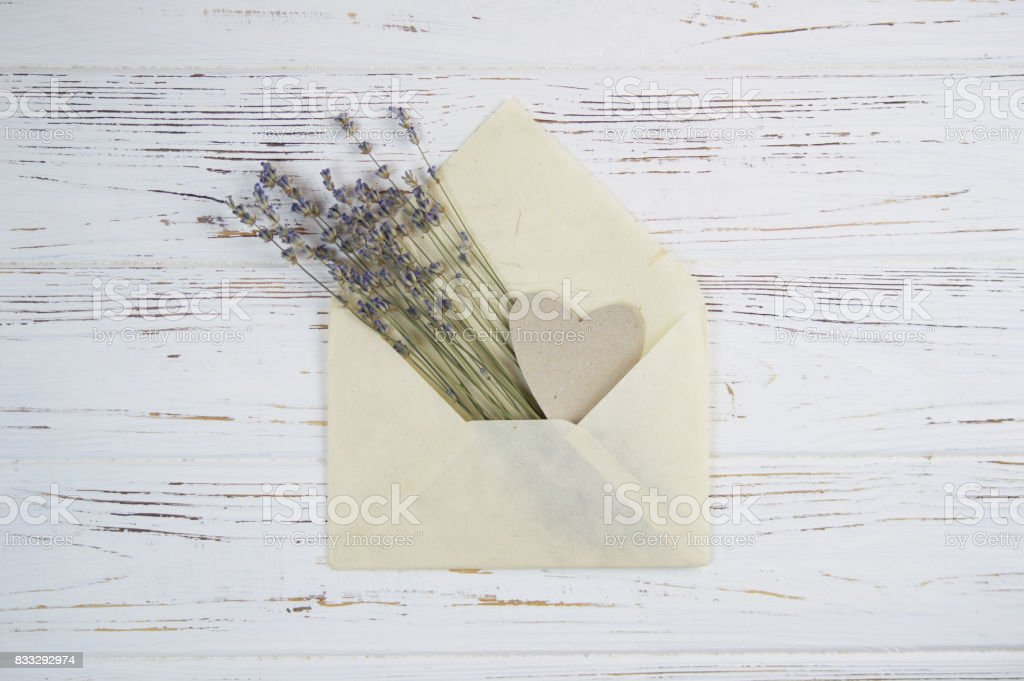 lavender flowers in a paper envelope stock photo