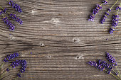 Lavender flowers on a wooden background.