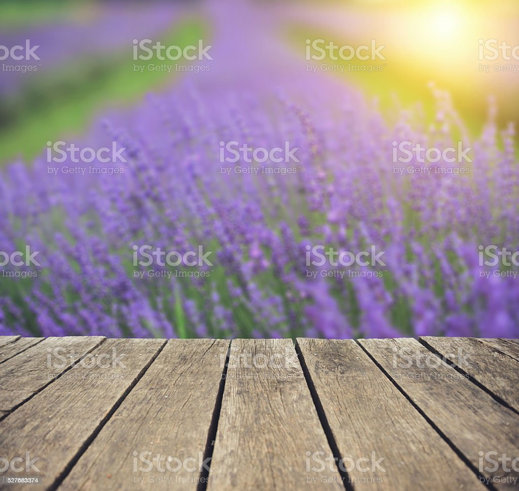 Lavender from porch stock photo
