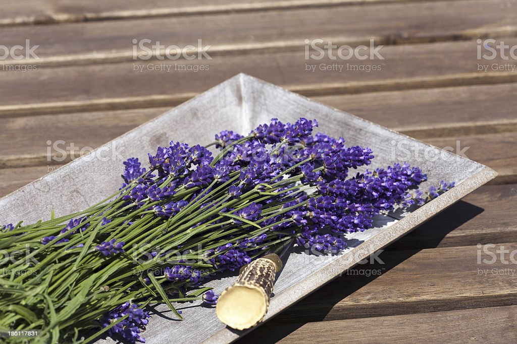 Lavender in a wooden bowl royalty-free stock photo
