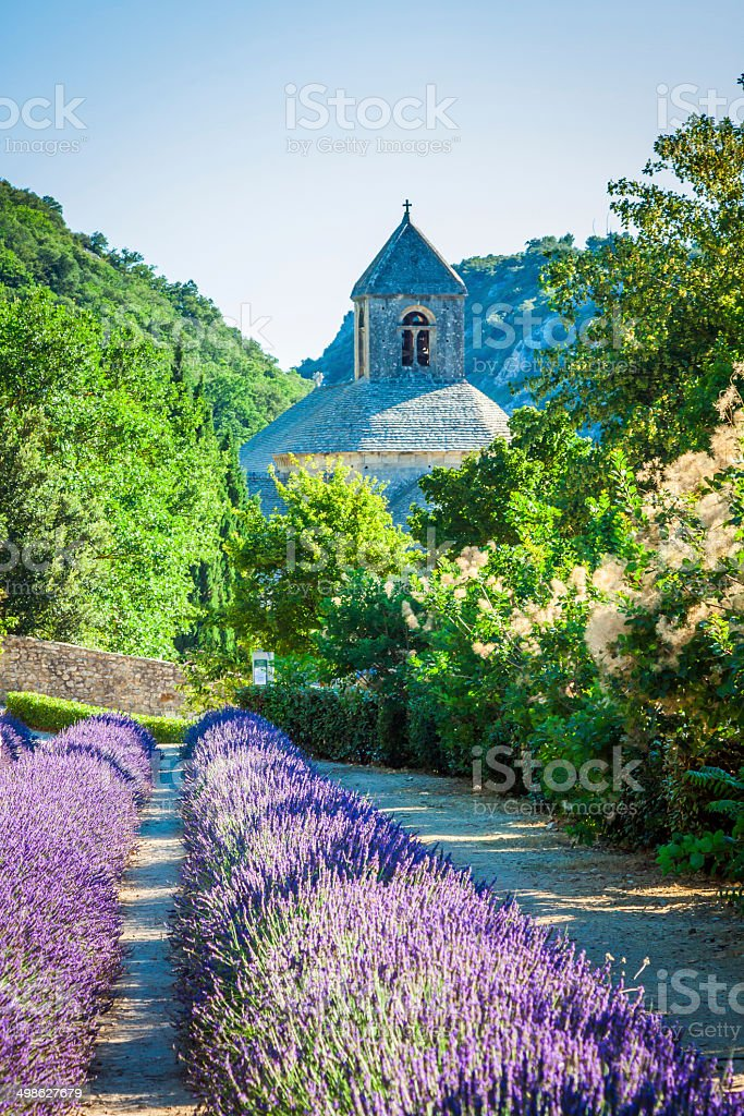 Lavender in front of the abbaye de Senanque in Provence stock photo