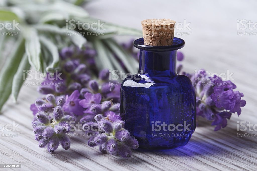 lavender oil in a blue glass bottle and flowers horizontal stock photo