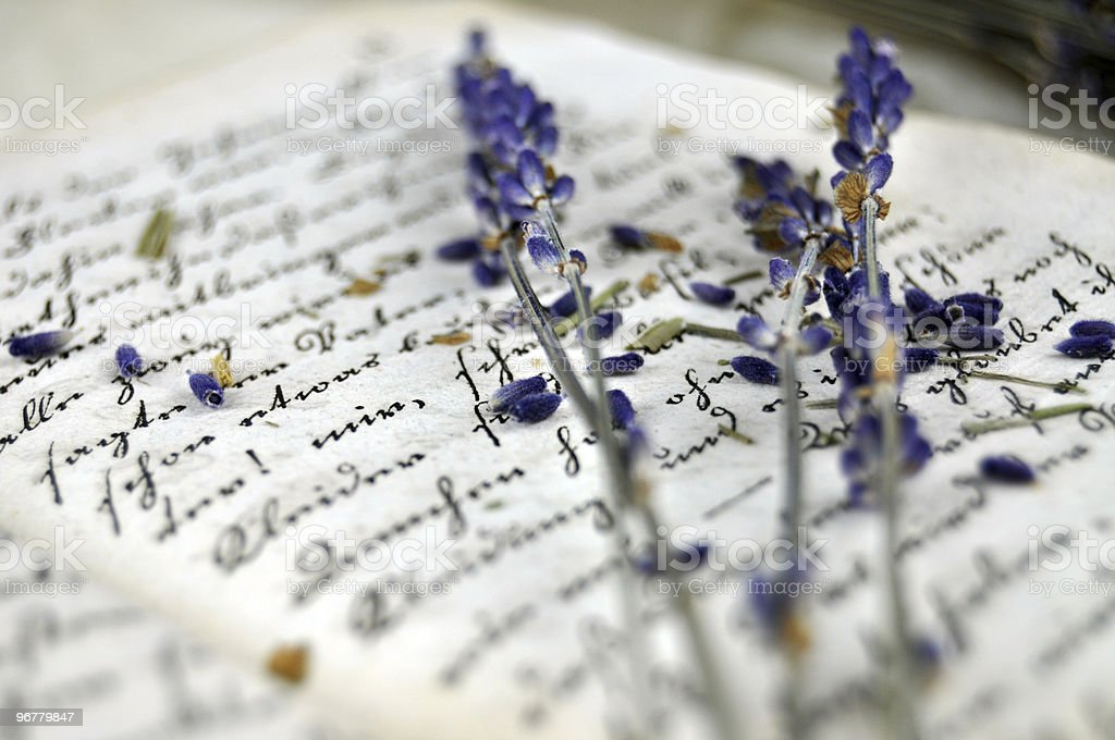 Lavender on a Diary royalty-free stock photo