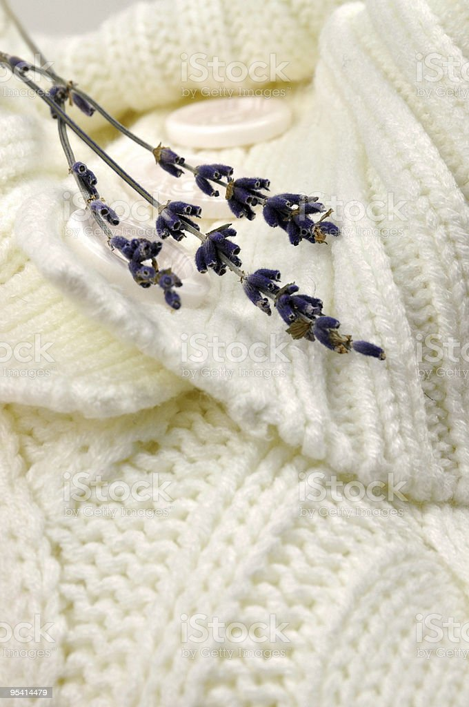 Lavender on Knitted Sweater royalty-free stock photo