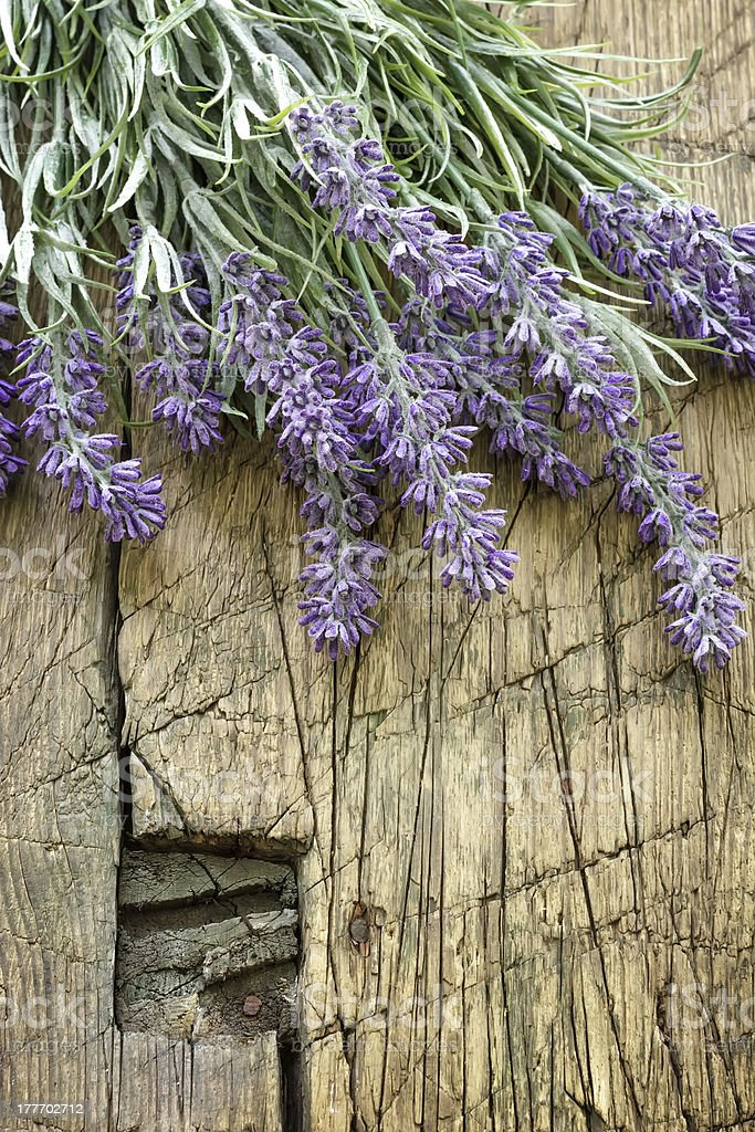 lavender on vintage wood royalty-free stock photo