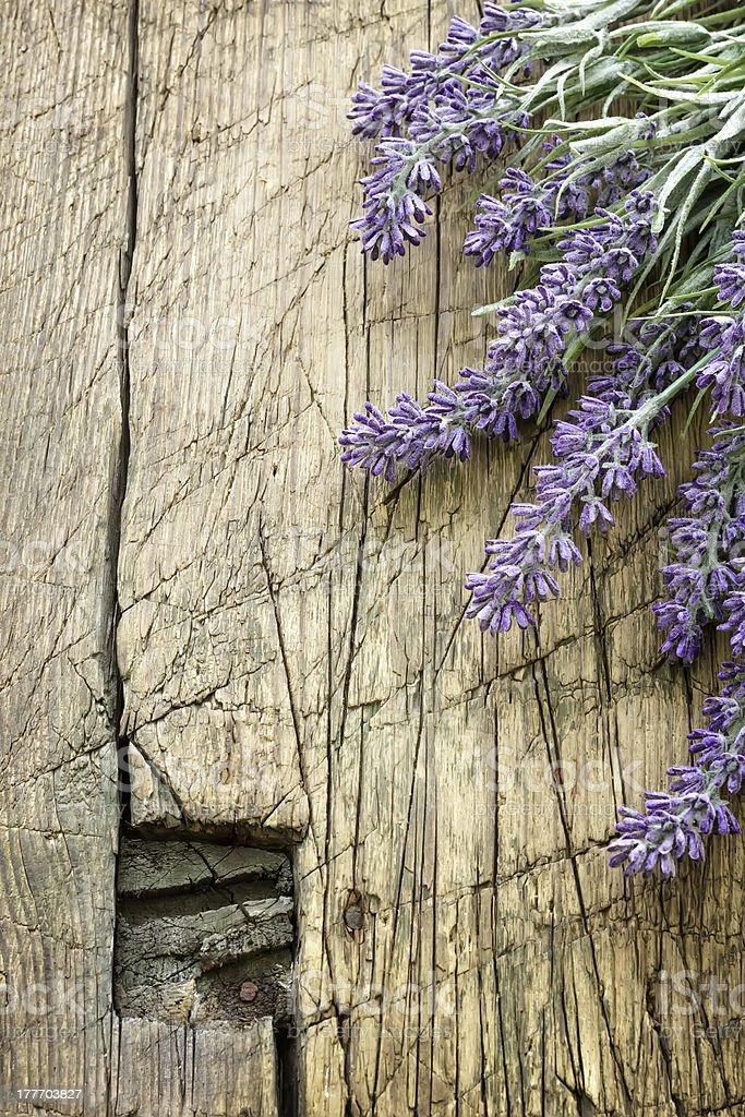 lavender on vintage wood royalty-free stock photo