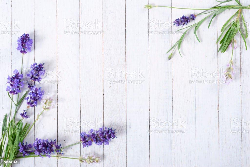 Lavender on white wooden stock photo