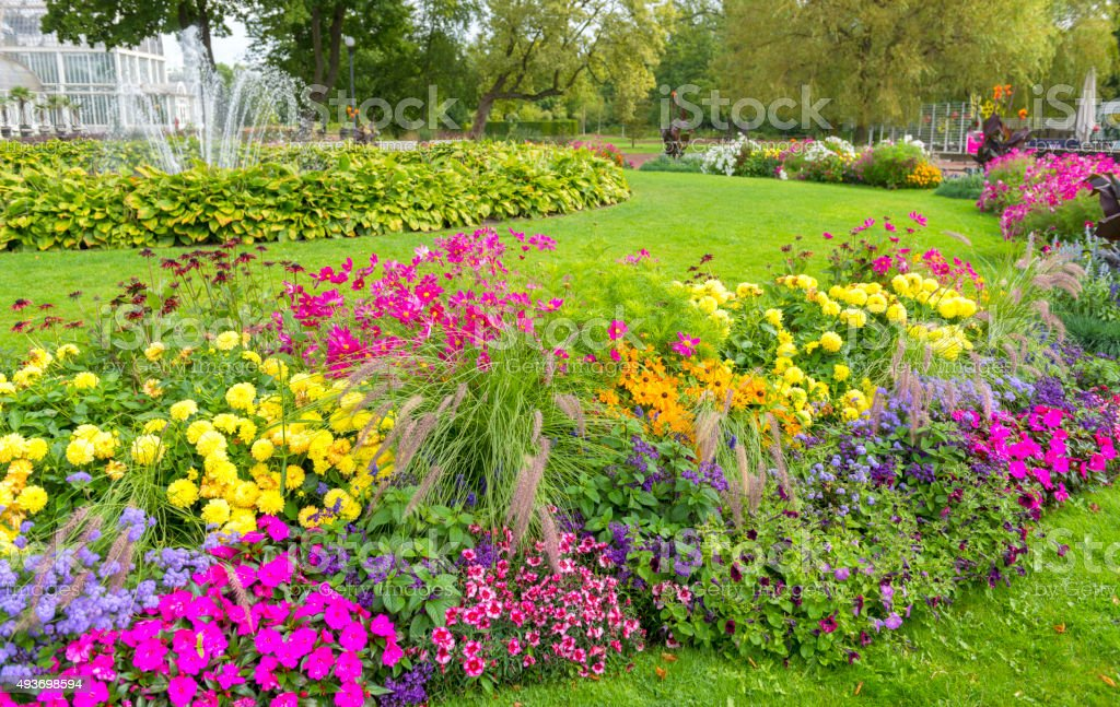 Lavish Flowerbed stock photo