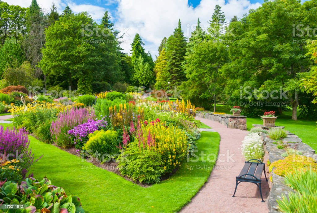Lavish summer garden with vibrant and bold colors royalty-free stock photo