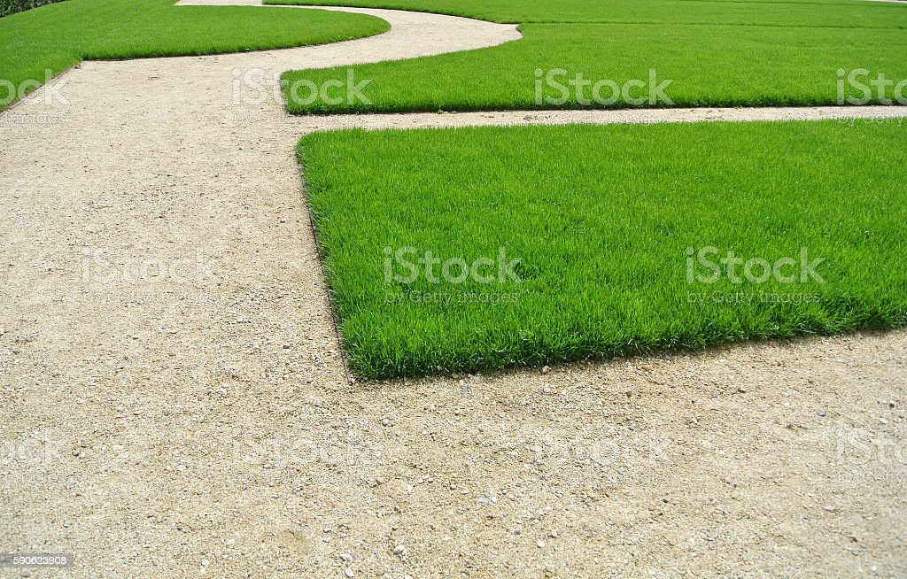 lawn and path stock photo