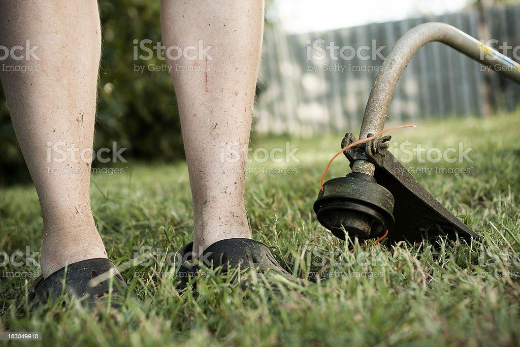Lawn Care stock photo