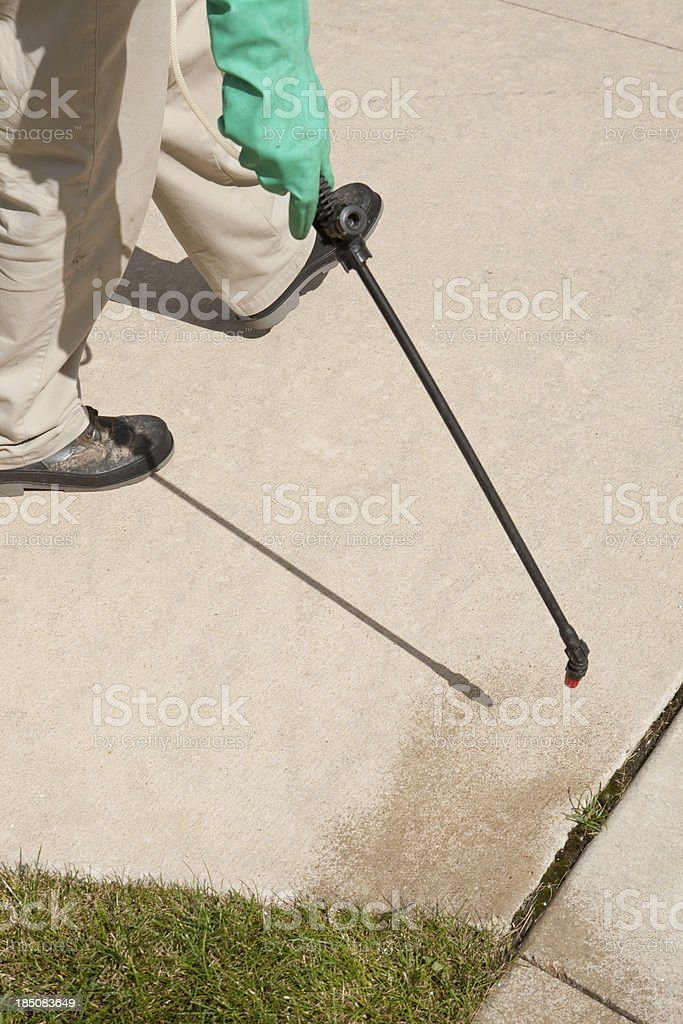 Lawn Care Worker Spraying Stray Grass between Driveway Crack stock photo