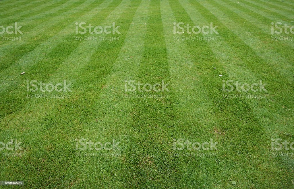 Lawn cut with stripes royalty-free stock photo