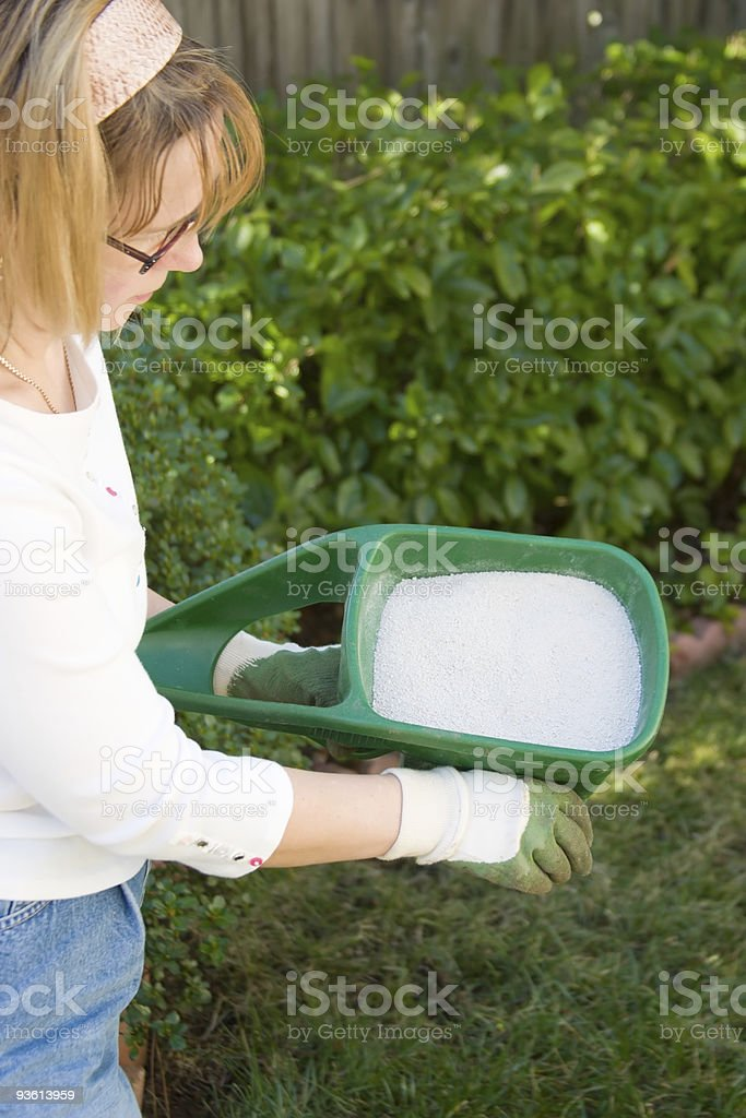 Lawn fertilizing royalty-free stock photo