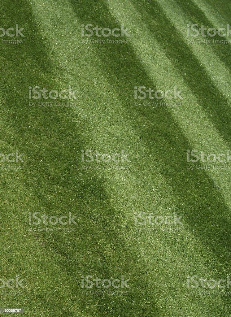 Lawn - freshly cut grass stock photo