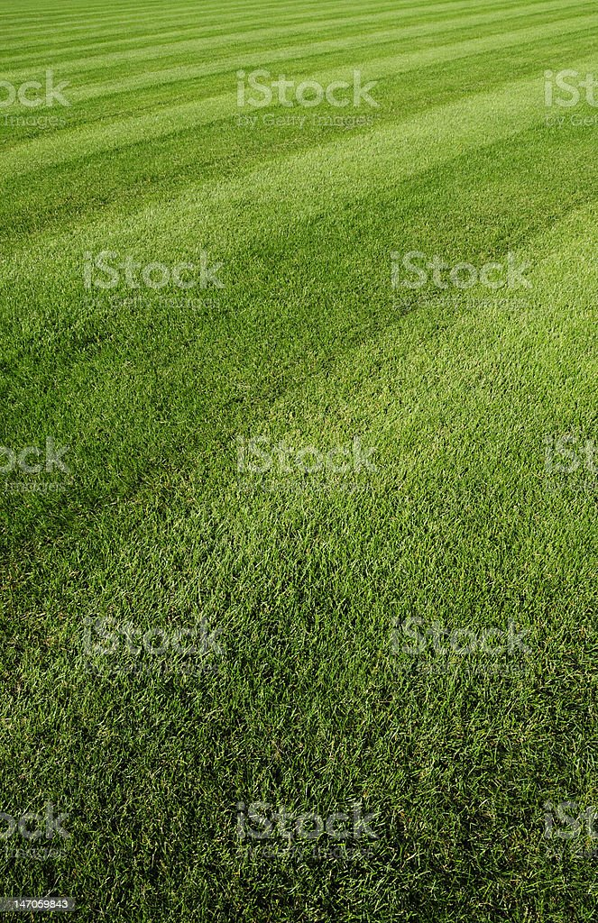 lawn ground royalty-free stock photo