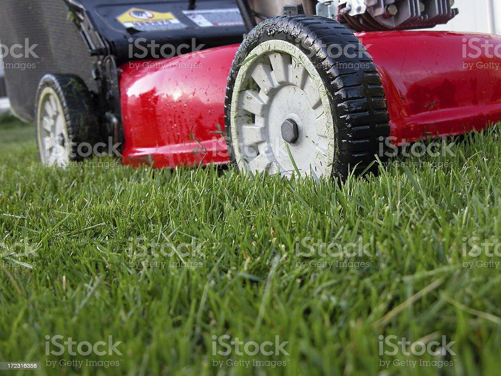 Lawn Machine on Green Grass stock photo