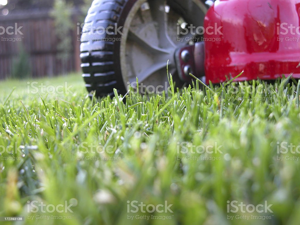 Lawn Mower at Grass Level stock photo