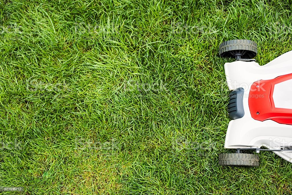 Lawn mower cutting green grass. stock photo