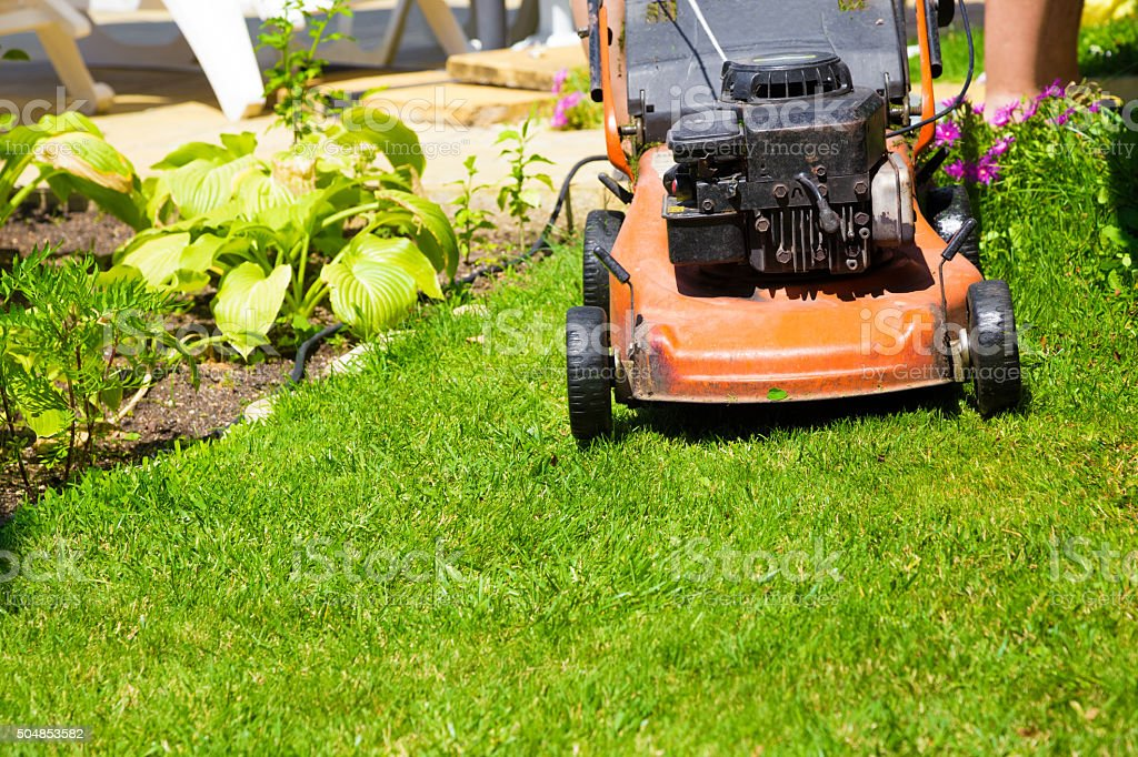Lawn mower on a fresh lawn in the garden stock photo