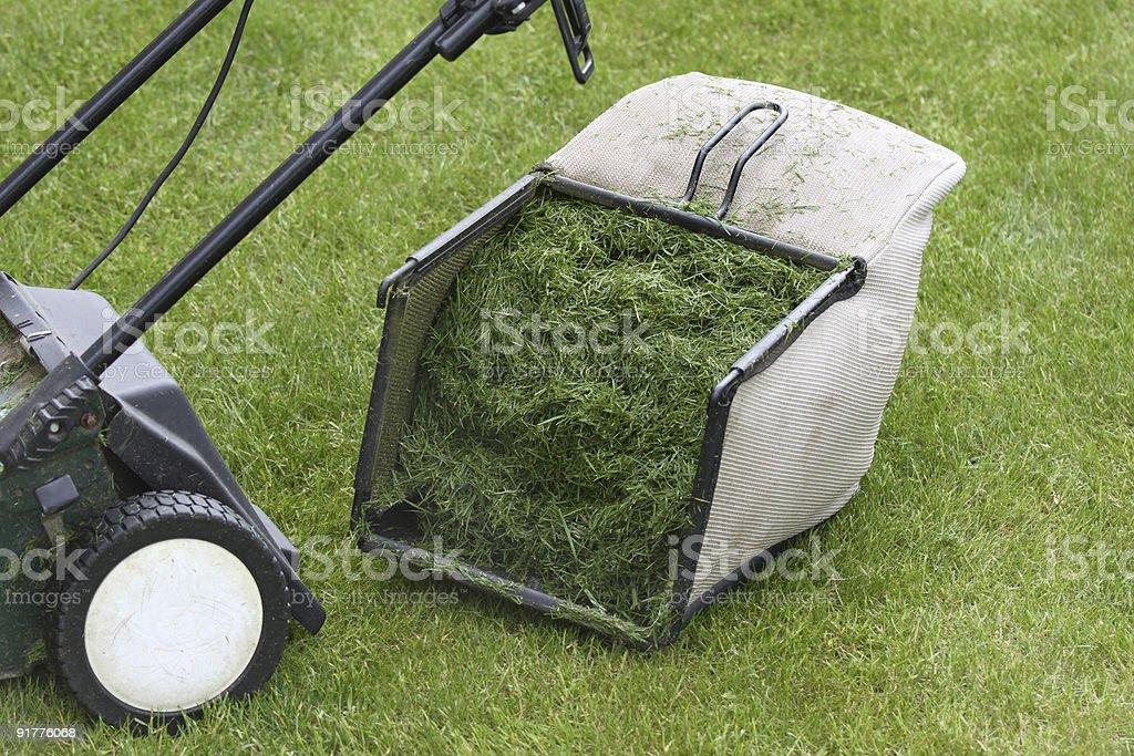 Lawn mower royalty-free stock photo